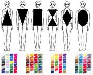 Tipo de cuerpo segun nuestra morfologia